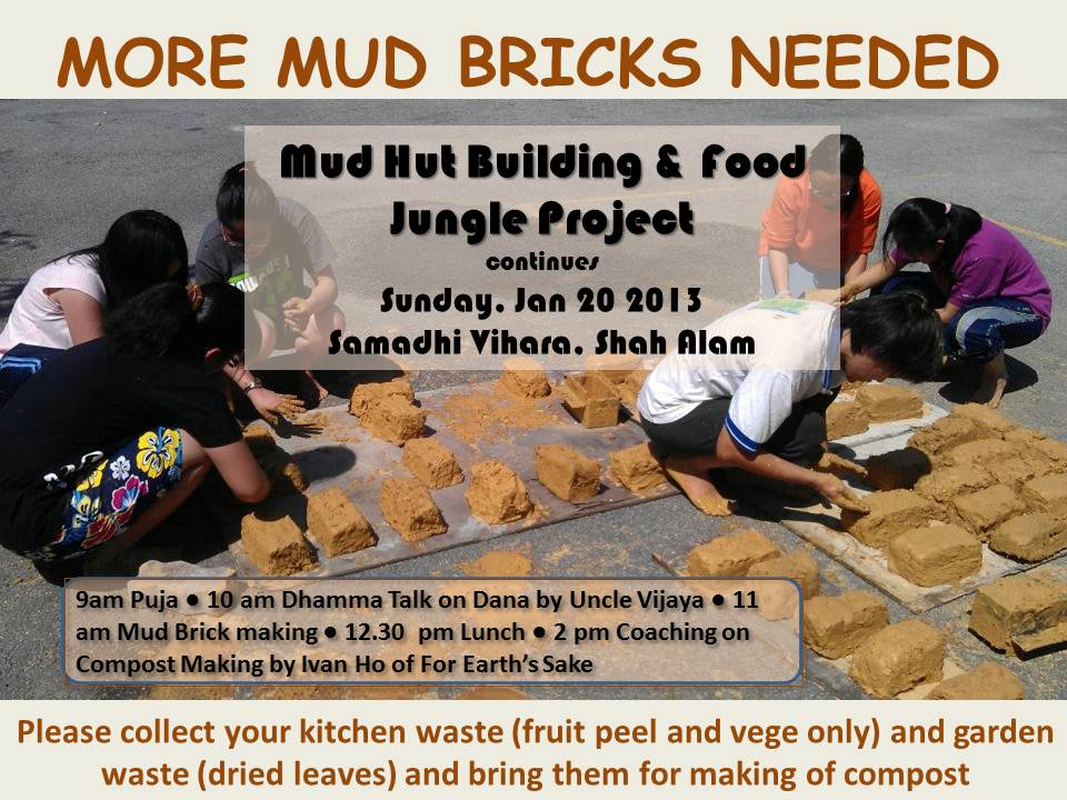 Mud Brick Project II